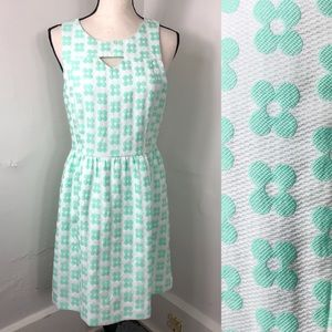 Kensie Mint Floral Fit & Flare Sleeveless Dress M